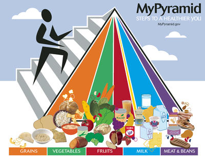 food pyramid define food pyramid at dictionary