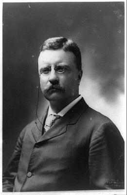 the detailed biography of theodore roosevelt Edmund morris's biography of theodore roosevelt deserves to stand as the definitive study of its restless, mutable, ever-boyish, erudite and tirelessly.